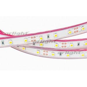 Светодиодная LED лента RTW 2-5000P 12V White (3528, 300 LED, LUX)