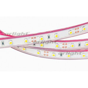 Светодиодная LED лента RTW 2-5000P 12V Warm (3528, 300 LED, LUX)