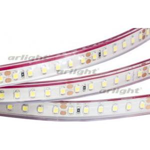 Светодиодная LED лента RTW 2-5000PGS 24V Warm 2x (3528, 600 LED)