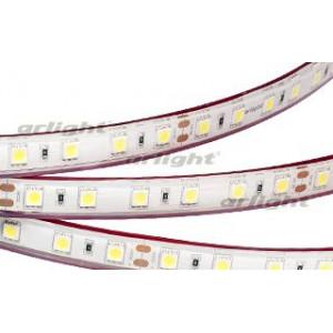 Светодиодная LED лента RTW 2-5000PGS 24V Warm 2x (5060, 300 LED)