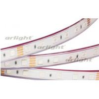 Светодиодная LED лента RTW 2-5000PGS 24V RGB 2X (5060, 300 LED)
