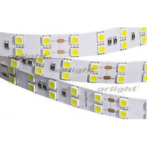 Светодиодная LED лента RT 2-5000 36V White 2x2 (5060, 600 LED, LUX)