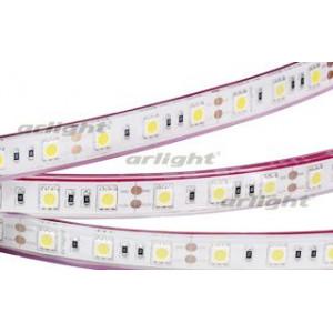 Светодиодная LED лента RTW 2-5000PGS 12V Green 2X (5060,300LED,LUX)