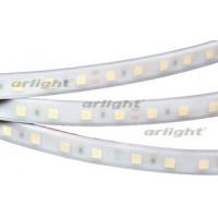 Светодиодная LED лента RTW 2-5000PW 24V White 2x (5060,300LED,LUX)