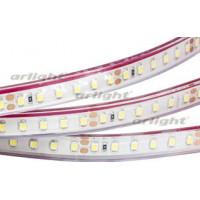 Светодиодная LED лента RTW 2-5000PGS 24V Cool 2x (3528, 600 LED)