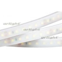 Светодиодная LED лента RTW 2-5000PW 24V Day White 2x (3528, 600LED, LUX)