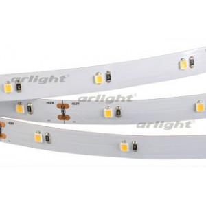 Светодиодная LED лента RT 6-5000 12V White (2835, 150 LED, PRO)