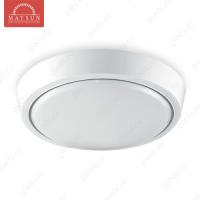 Накладной светодиодный светильник DLR-12 AC220V 12W d250мм*H35мм (Теплый белый) 960lm (A-05-L)
